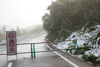 snow2957.jpg
