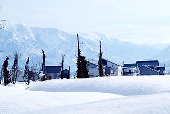 D-snow1349.jpg