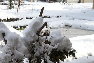 IMG_snow6040.jpg
