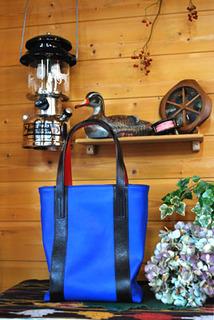 bag-t5518.jpg