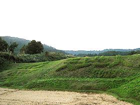 field3666.jpg