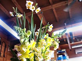 flower4245.jpg