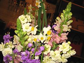 flower4249.jpg