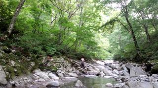 river3I0020.jpg
