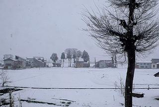 snow10622.jpg