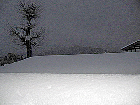snow4133.jpg